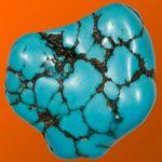 EasyLearn Rocks & Minerals HD