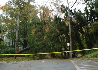 Hurricane_Sandy_photos_Summit_NJ_6