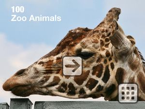 100 Zoo Animals1