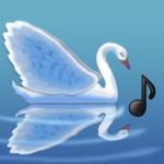 The Swan, Music Bee Club