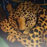 The Animals Sleep