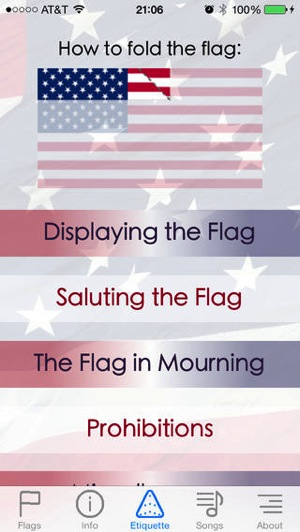 The American Flag 2