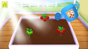 Yipy Garden Farm 2