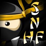 Spelling Ninjas- HF