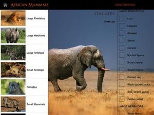 African Mammals HD 4