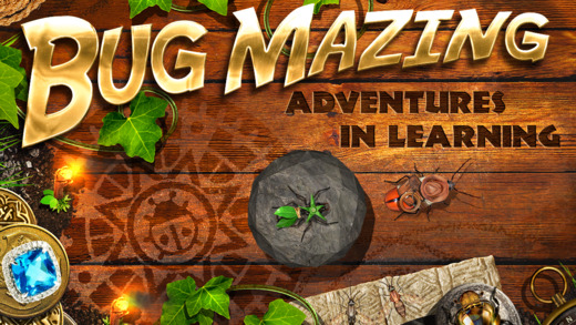 Bug Mazing  Adventures in Learning