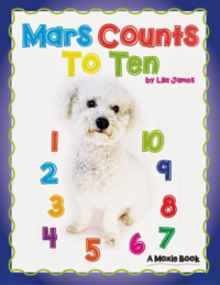 Mars Counts Cover_FINAL copy