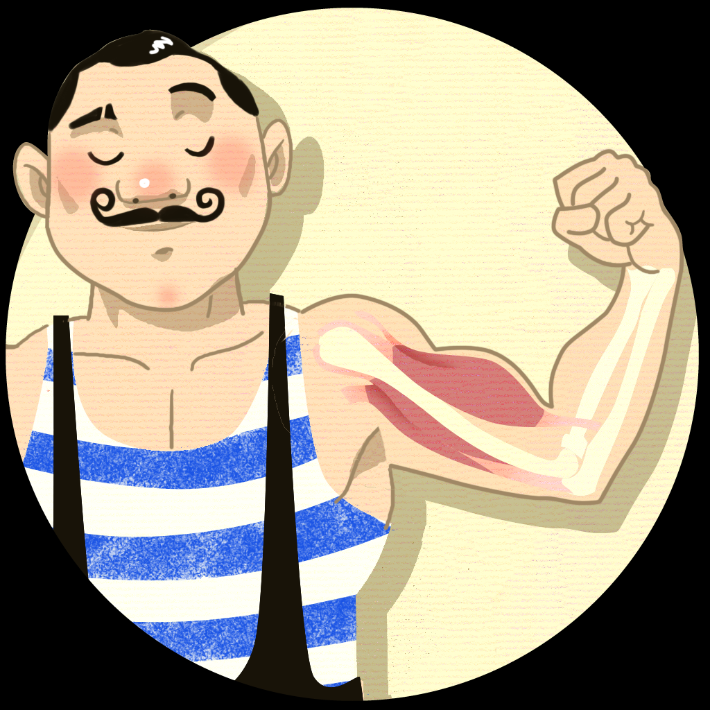 Muscles For Kids - An Anatomy App for Elementary Aged Children - Fun ...